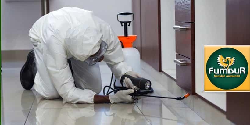 expertos en control de plagas